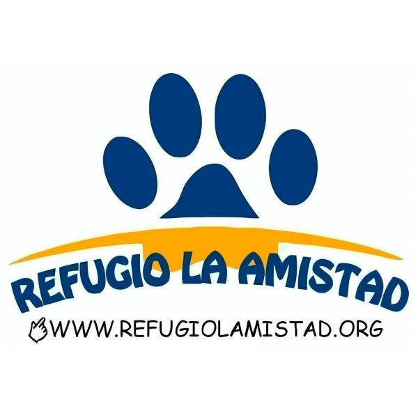 Amistad animo lucro en Rialto 7765